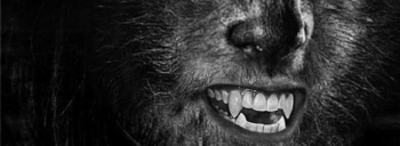Existují skutečně vlkodlaci?