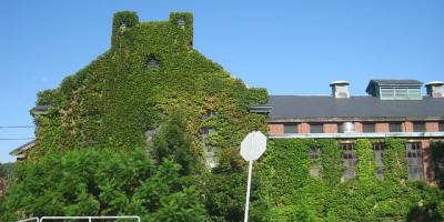 Fernald State School (Waltham, Massachusetts)