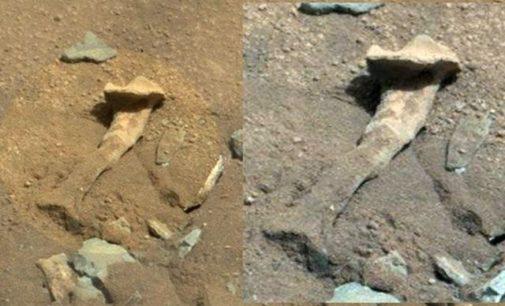Našlo vozidlo na Marsu kost mimozemšťana?