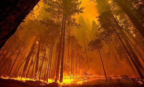 Video: Záhadná ohnivá planina v Rusku