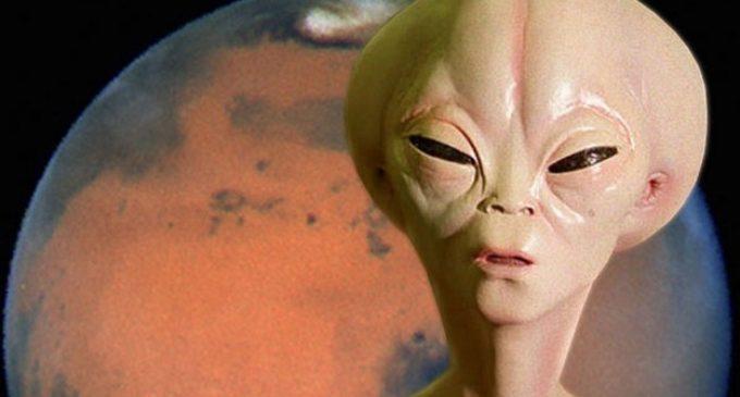 Mimozemské formy života jsou nám možná blíž, než jsme mysleli