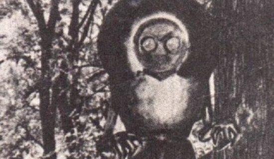 Flatwoodske monstrum: mimozemšťan či tajný vládní projekt?