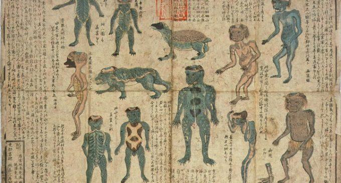 Japonský netvor kappa – legenda, nebo skutečná bytost?