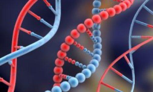 Mimozemské geny v lidské DNA? Vědci tvrdí, že ano!