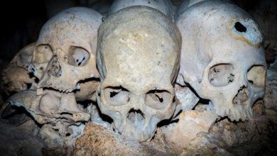 Pět šokujících případů, ve kterých hrál hlavní roli kanibalismus